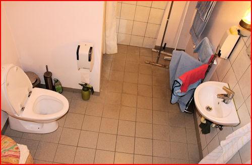 Toiletforhold og Lailas Loppemarked